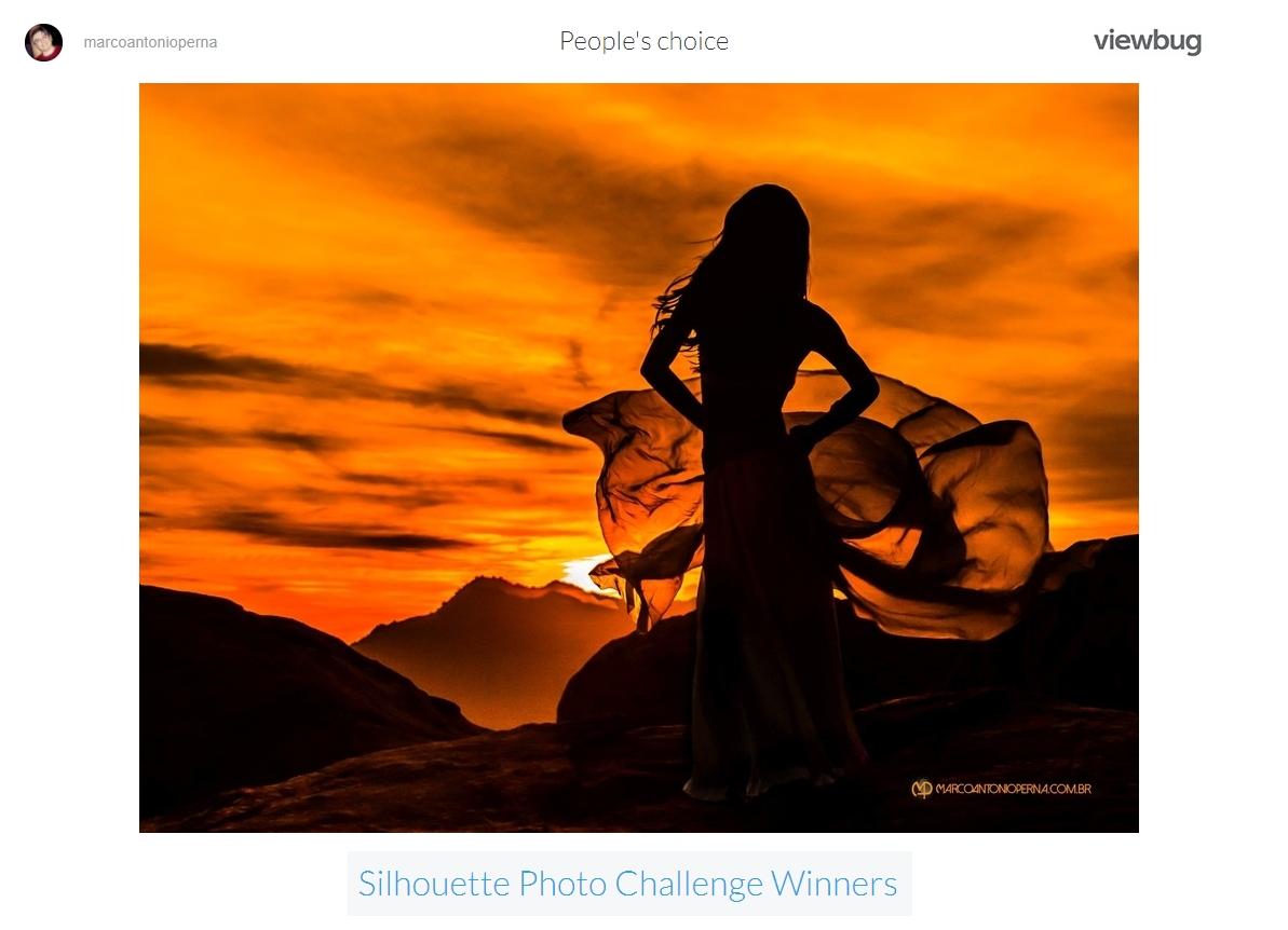 https://www.viewbug.com/challenge/silhouette-photo-challenge-by-victoriarichardson